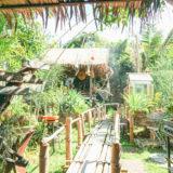 バンコク郊外ラムカムヘンのカフェ「James 500 Organic Farm Cafe」