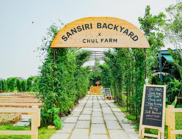 バンコクに誕生!大規模オーガニック農園&カフェ「Sansiri Backyard x Chul Farm」